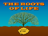 The Roots of Life Instructions